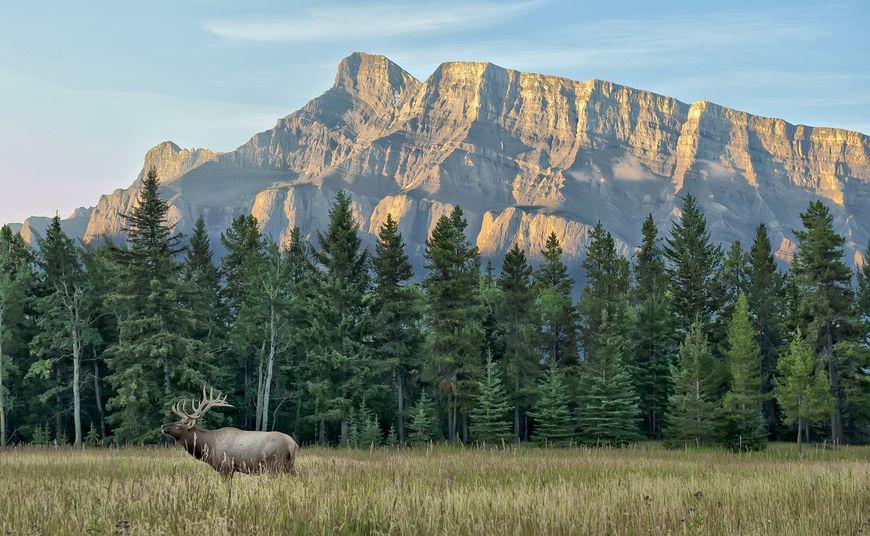 پارک های ملی کانادا